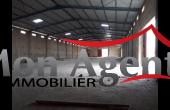 HL026, Hangar 7 500 m² à louer Dakar Diamniadio