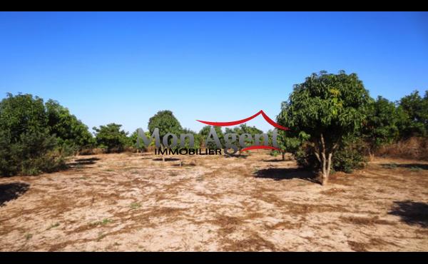 Terrain de 4000 m² à vendre à Bayakh Dakar