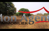 TV006, Terrain de 3hectare en vente à Bayakh Dakar